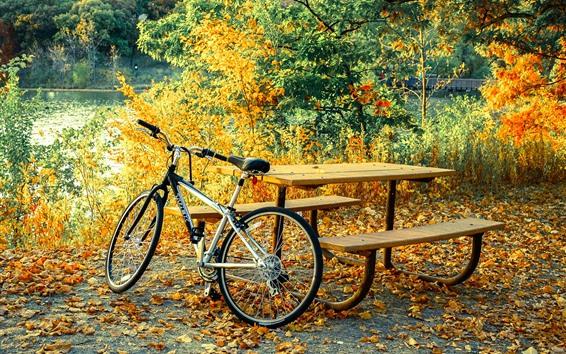 壁紙 自転車、テーブル、木、葉、秋