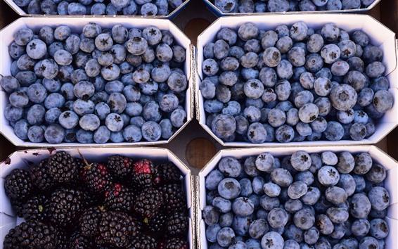 Обои Черника и ежевика, фрукты, урожай