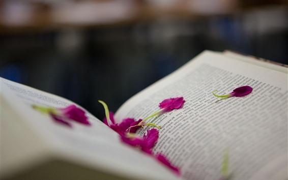 Wallpaper Book, pink petals, hazy