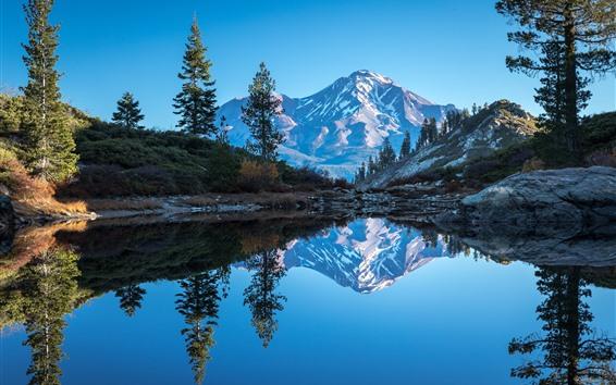Wallpaper California, Mount Shasta, lake, mountains, trees, water reflection, USA