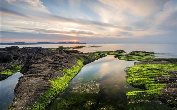 Обои Далянь, Китай, море, закат, скалы, мох