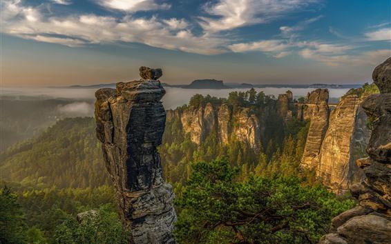 Fondos de pantalla Alemania, Suiza sajona, montañas, rocas, árboles, nubes, niebla, mañana