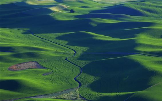 Papéis de Parede Verde, campos trigo, rio, paisagem bonita, palouse, eua