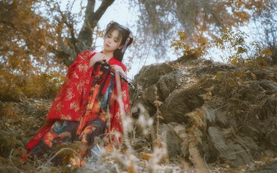 Fond d'écran Fille de la dynastie des Han, style rétro, flûte