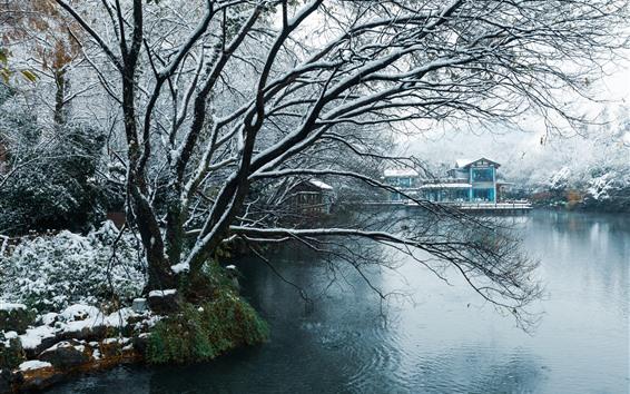 Wallpaper Hangzhou, China, winter, snow, park, trees, pond