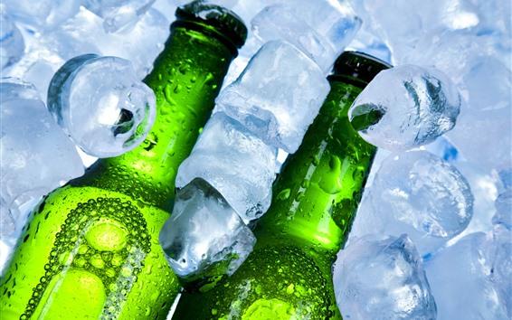 Papéis de Parede Cubos de gelo, garrafas, cerveja