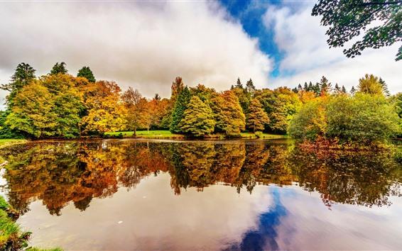 Wallpaper Ireland, Botanic Gardens Dublin, trees, lake, water reflection, autumn