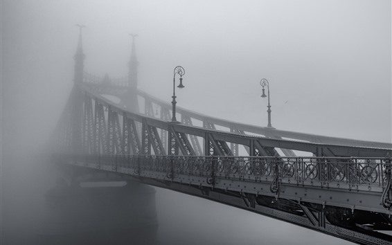 Wallpaper Iron bridge, fog, morning, black and white picture