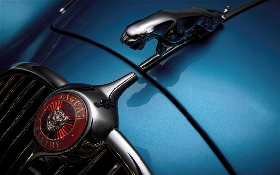 Обои Ягуар логотип автомобиля