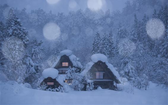 Wallpaper Japan, Shirakawa-go, village, houses, trees, thick snow, winter