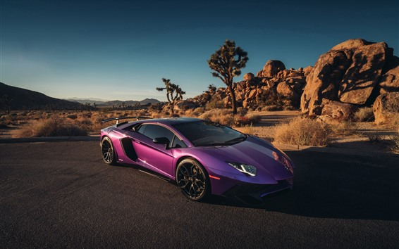 Fondos de pantalla Supercar púrpura de Lamborghini
