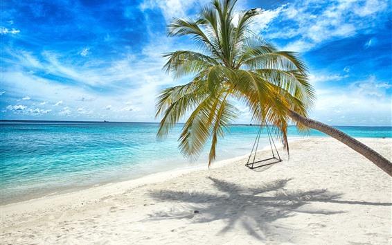 Fond d'écran Palmier solitaire, balançoire, plage, mer