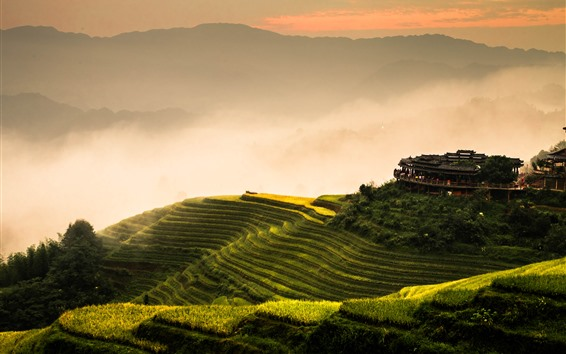 Обои Лунцзи рисовые террасы, утро, туман, горы, Гуйлинь, Китай