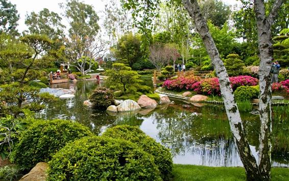 Wallpaper Park, trees, pond, stones, people