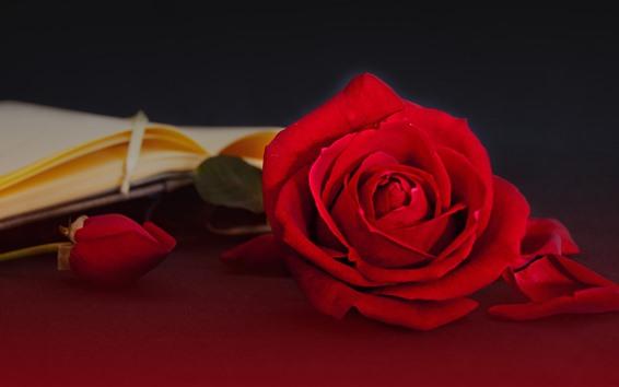 Wallpaper Red roses, book, romantic