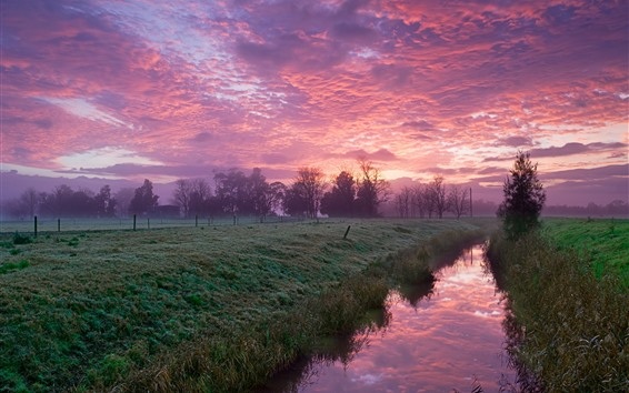 Wallpaper River, trees, grass, fields, clouds, countryside, morning