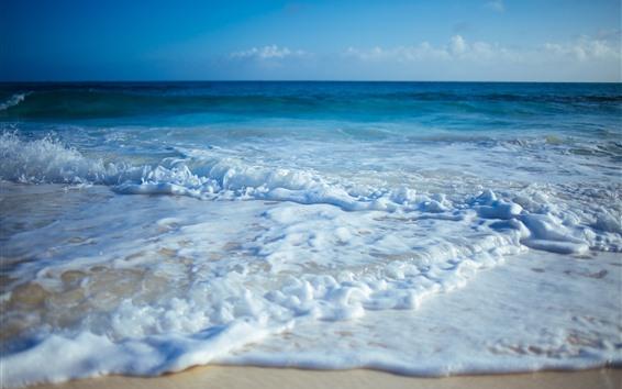 Обои Море, пена, пляж, побережье