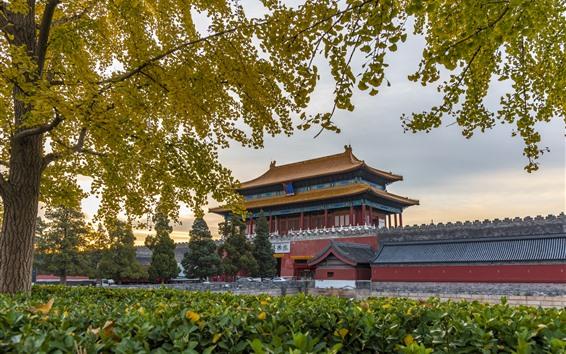 Wallpaper Shenwumen, Beijing, China, trees, autumn