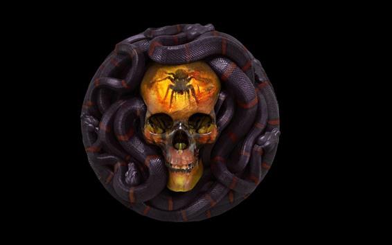 Обои Череп, змея, ужас
