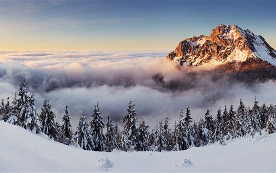 Fondos de pantalla Eslovaquia, montaña, árboles, nubes, nieve, invierno