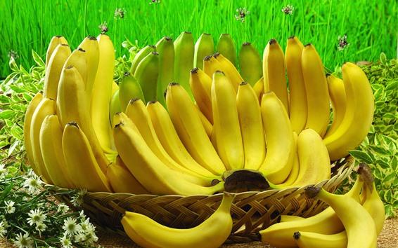 Fondos de pantalla Algunos plátanos, frutas, cosechas