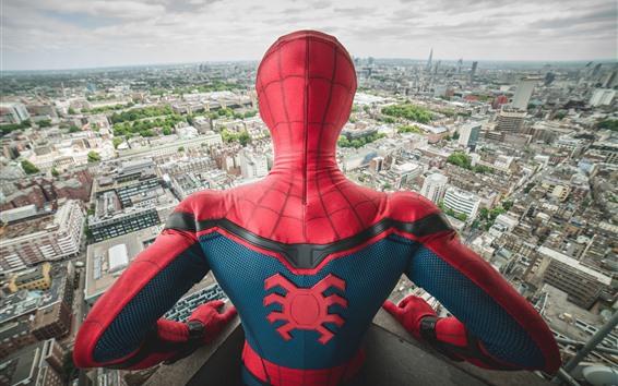 Wallpaper Spider-man, back view, city
