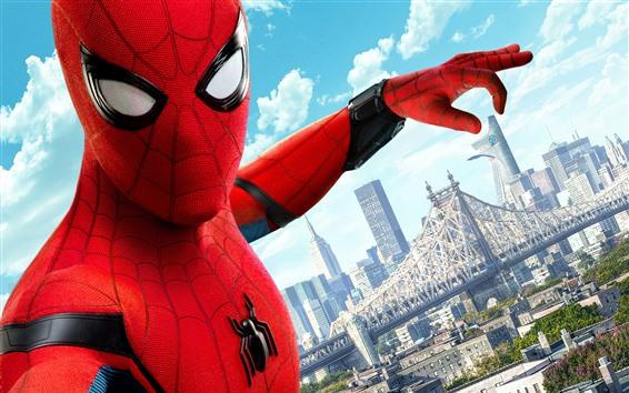 Fondos de pantalla Hombre araña, superhéroe, DC Comics