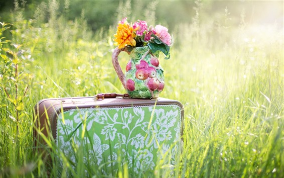Wallpaper Suitcase, flowers, vase, grass