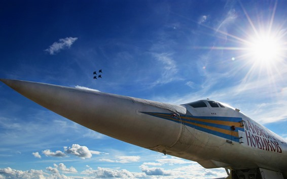 Fondos de pantalla Cisne bombardero, avion