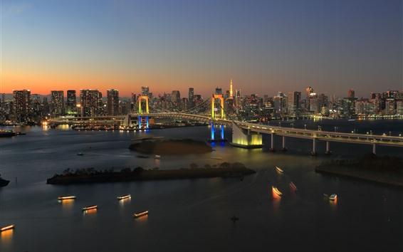 Wallpaper Tokyo, Japan, Rainbow Bridge, city night, river, boats, lights