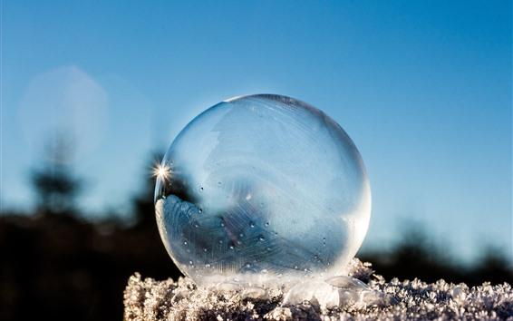 Обои Прозрачный шар, снег