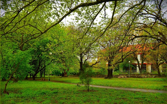 Wallpaper Trees, meadow, park, fence, house, green, spring
