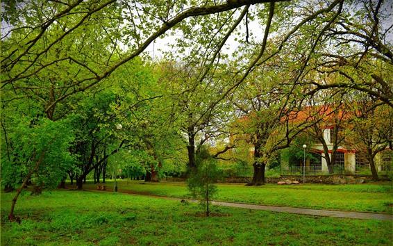 Fond d'écran Arbres, pré, parc, clôture, maison, vert, printemps