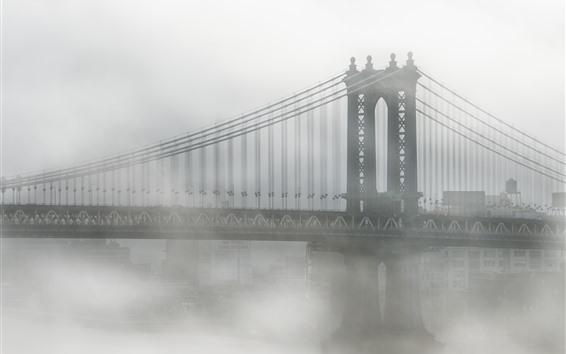 Fondos de pantalla Estados Unidos, Nueva York, Brooklyn, puente, niebla, mañana