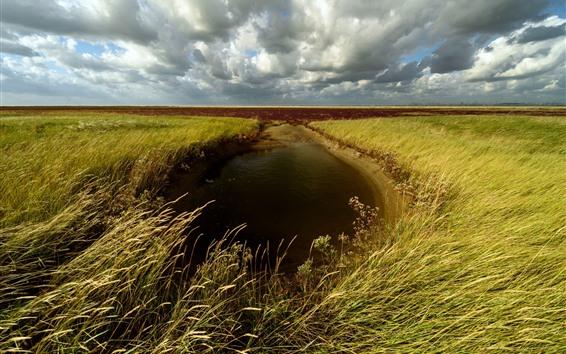 Обои Пшеничные поля, лужи, облака