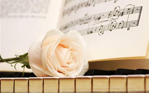 Обои Белая роза, клавиши пианино, партитура