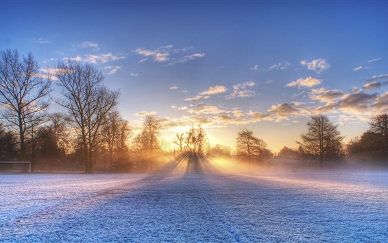 Fond d'écran Hiver, terrain de football, neige, arbres, rayons de soleil, matin
