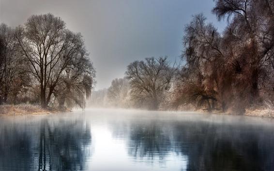 Fondos de pantalla Invierno, río, árboles, niebla, mañana