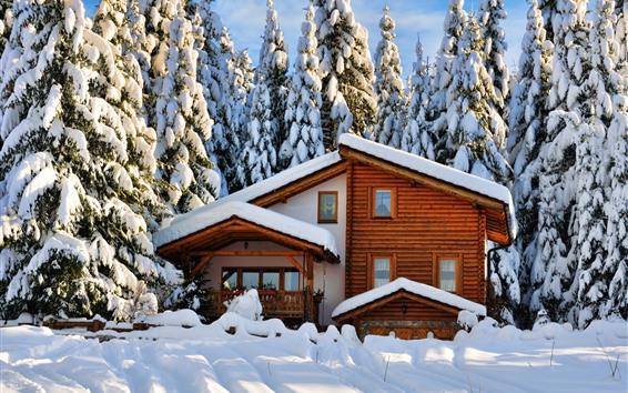 Обои Деревянный дом, деревья, густой снег, зима