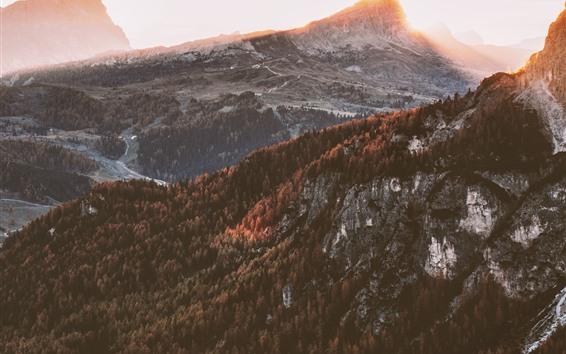 Fondos de pantalla Otoño, árboles, montañas, niebla, amanecer, mañana.