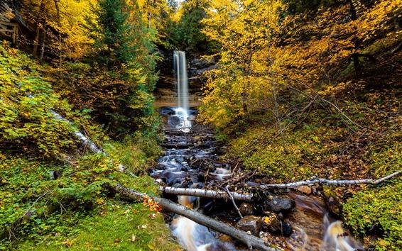 Обои Осень, деревья, водопад, скалы