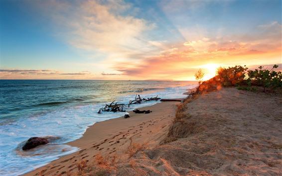 Fondos de pantalla Playa, arenas, mar, olas, atardecer.