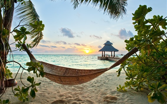 Fondos de pantalla Playa, mar, hamaca, árbol, puesta de sol, tropical.