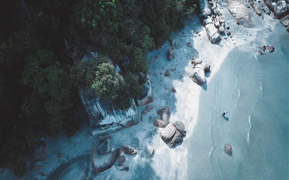 Fondos de pantalla Playa, mar, rocas, árboles, vista superior, tropical.