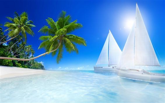 Papéis de Parede Praia, mar, sol, Veleiros, palmeiras, tropical