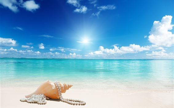 Fondos de pantalla Playa, concha, joyas, mar, sol, azul.