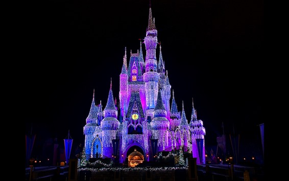 Wallpaper Beautiful Disneyland, castle, shining lights, night