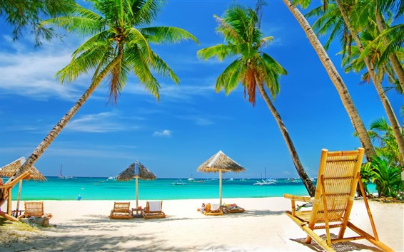 Wallpaper Beautiful beach, palm trees, sea, chairs, tropical