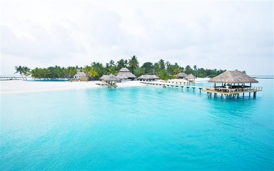 Papéis de Parede Mar bonito, praia, costa, palmeiras, resort, cabana