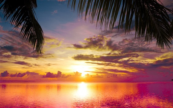 Fondos de pantalla Hermosa puesta de sol, mar, agua, nubes, playa, follaje de palmeras.